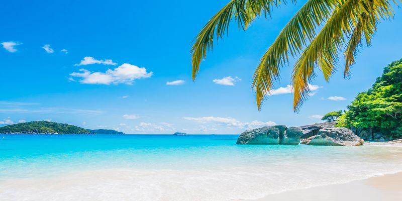 Seišelu salās - tropu paradīzē Indijas okeāna vidū.